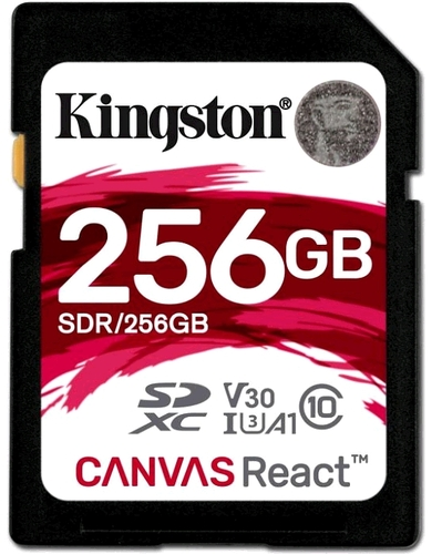 kingston_sdhc256gb_canvas_rea